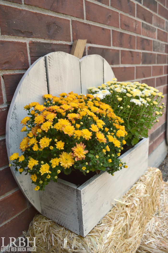 Rustic Pumpkin Stand for Fall Flowers   LITTLE RED BRICK HOUSE